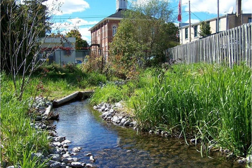 Little Creek